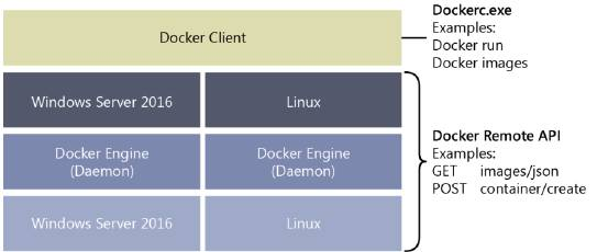 Docker_Windows_Linux