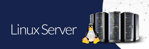 Плюсы сервера на Linux