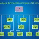 Каталоги в Linux