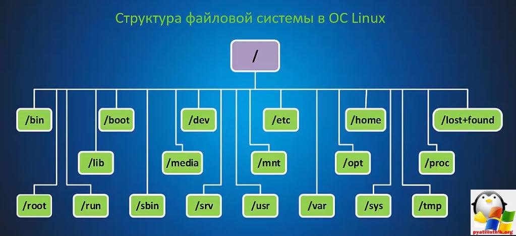 Структура каталогов в Linux