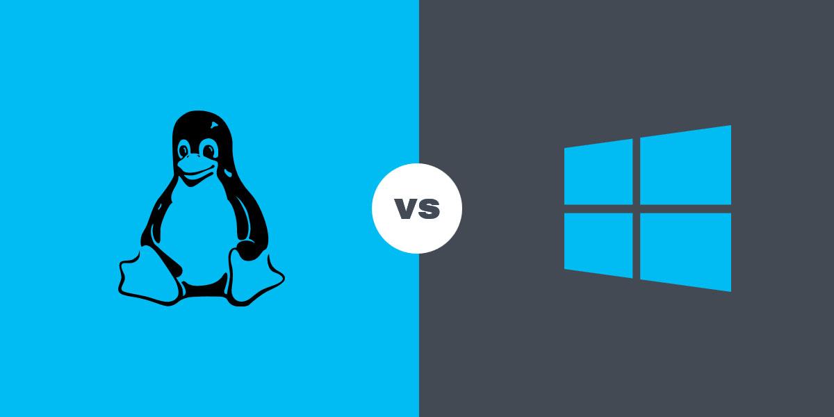 Виндовс и Линукс на один ПК