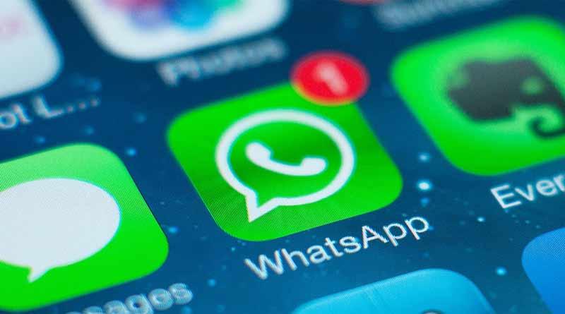программа Whatsapp